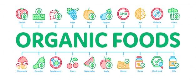 Banner de infográfico mínima de alimentos orgânicos eco
