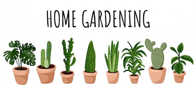 Banner de jardinagem em casa.