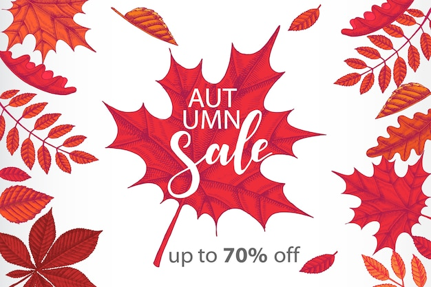 Banner de outono de venda com folhas coloridas de mão desenhada. oferta especial