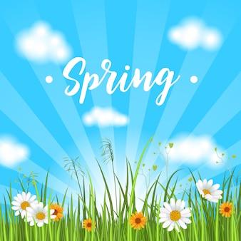 Banner de primavera com camomila florescendo