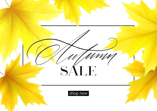 Banner de venda de outono com folhas de bordo de outono amarelas