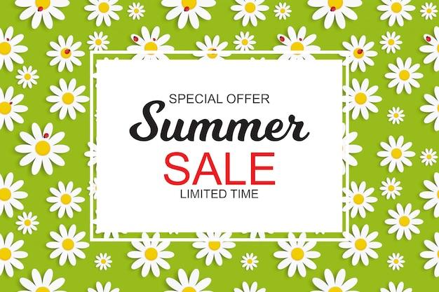 Banner de venda de verão com flores margarida