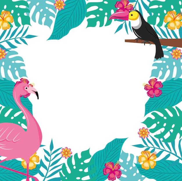 Banner de verão com espaço em branco entre folhas tropicais com flamingo e tucano