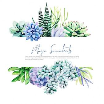 Banner horizontal com aquarela cactos e plantas suculentas