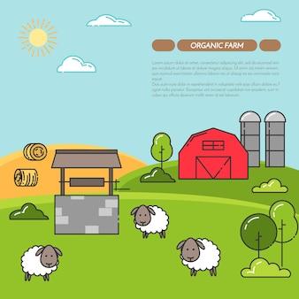 Banner horizontal de fazenda. paisagem de fazenda com celeiro, ovelhas.