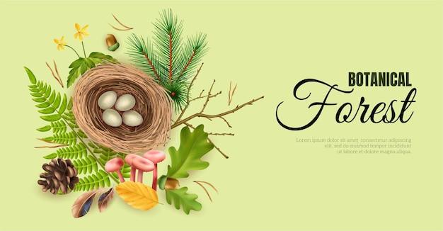 Banner horizontal de floresta botânica realista com texto ornamentado editável e ilustração vetorial de ninhos de pássaros com imagens de ovos e folhas