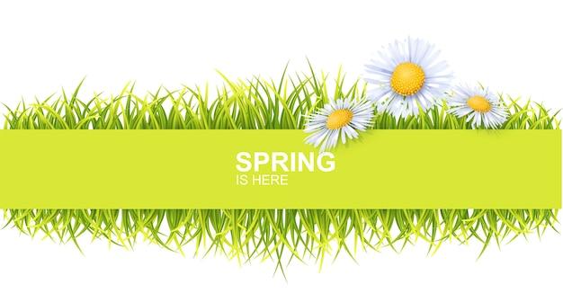 Banner horizontal de primavera