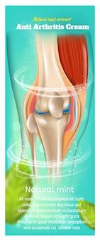 Banner ou acúmulo com ilustração sobre o extrato de hortelã natural de creme anti artrite