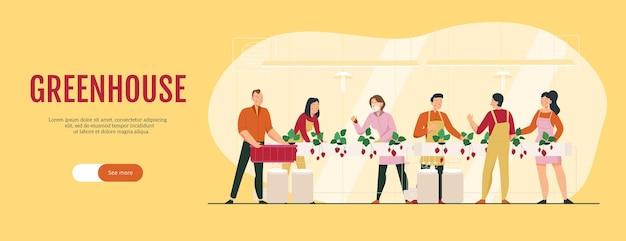 Banner plano horizontal com personagens humanos cultivando morangos em estufa