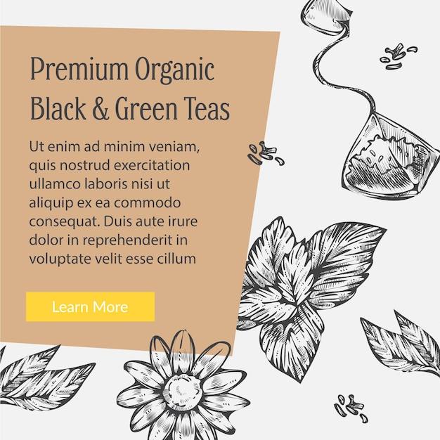 Banner promocional de chás verdes e pretos orgânicos premium