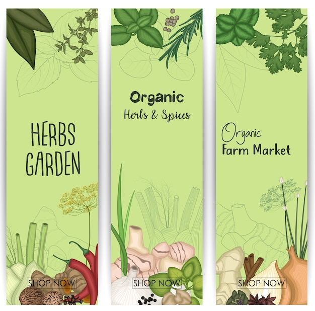Banner vertical com especiarias e ervas