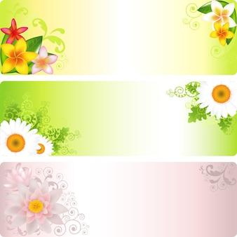 Banners de flores com lótus, camomilas e frangipani