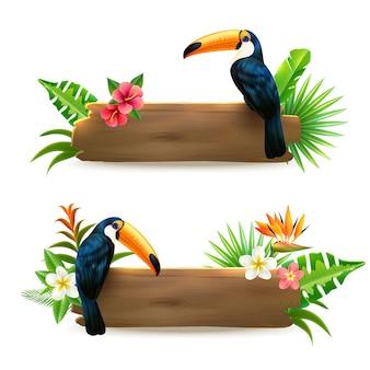 Banners de floresta tropical de tucano