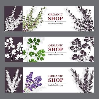 Banners de loja orgânica com ervas