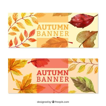 Banners de outono bonitas pintadas com aguarelas