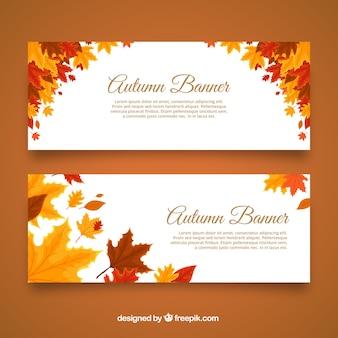 Banners de outono com folhas frescas