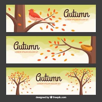Banners de outono lindo com design plano