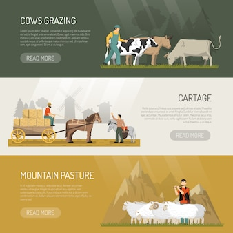 Banners de pasto de animais de fazenda