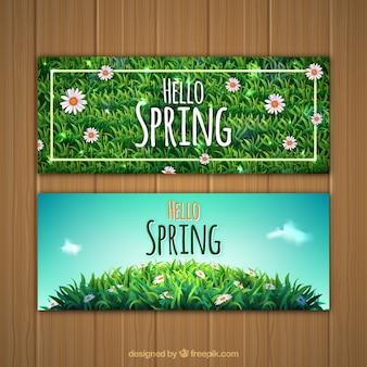 Banners de primavera com grama