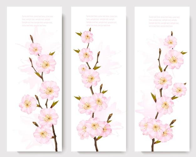 Banners de ramo de sakura linda.