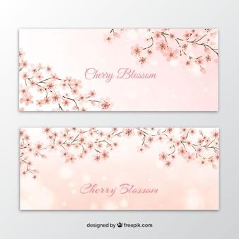Banners de ramos com flores de cerejeira