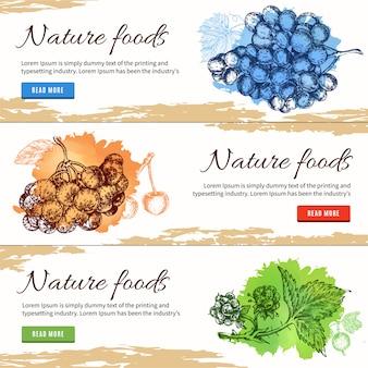 Banners desenhados à mão de alimentos naturais