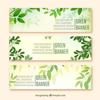 Banners eco