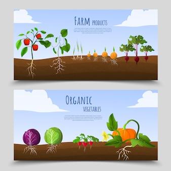Banners horizontais de alimentos saudáveis