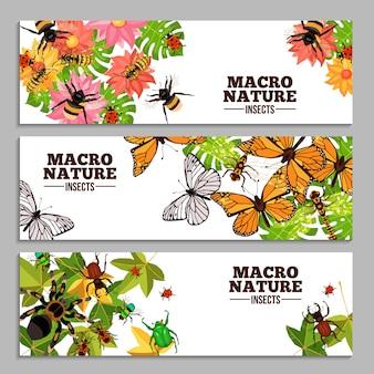 Banners horizontais de insetos