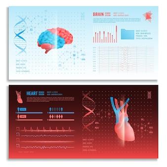 Banners horizontais de interface médica com imagens realistas de sistema de busca de coração e cérebro e elementos de hud
