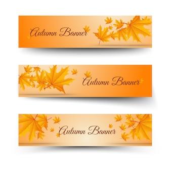 Banners horizontais florais de outono