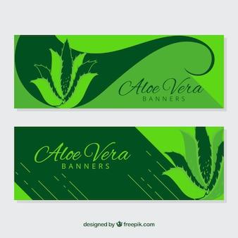 Banners verdes de aloe vera
