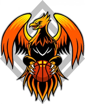 Basquete phoenix 2