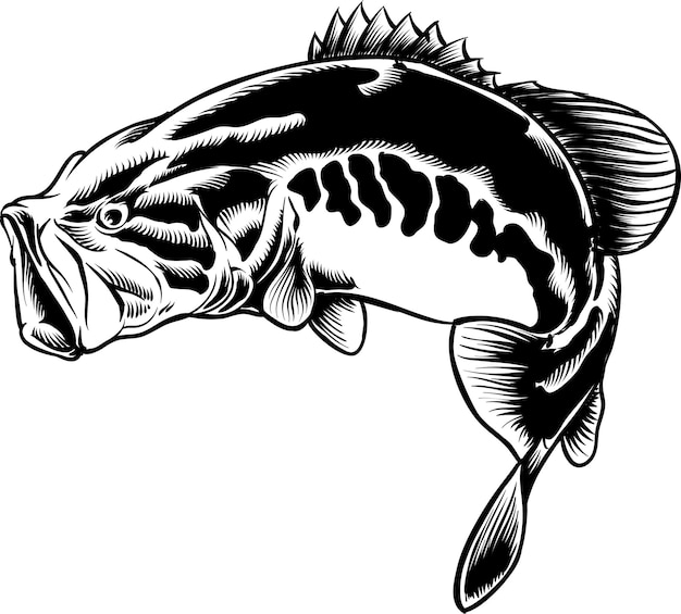 Bass fish em ilustração a preto e branco