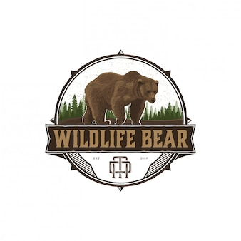 Bear aventura da vida selvagem e ao ar livre