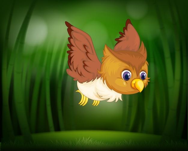 Bebê coruja voando através de uma floresta