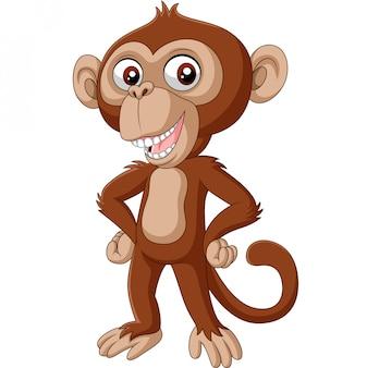 Bebê fofo chimpanzé posando de desenhos animados