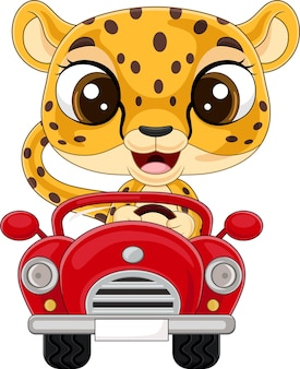 Bebê leopardo desenho animado dirigindo carro vermelho