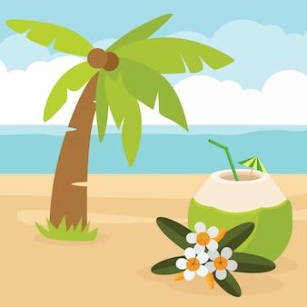 Bebida de água de coco em uma praia de areia do mar