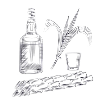 Bebida de álcool, talos de planta de açúcar, rum de garrafa e copo de cocktail.