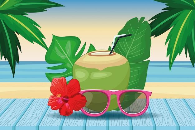 Bebidas de coco e óculos de sol