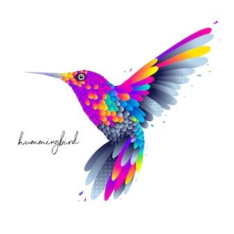 Beija-flor colorido