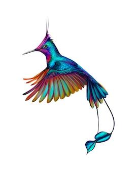 Beija-flor de um toque de aquarela, esboço desenhado à mão. ilustração de tintas
