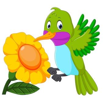 Beija-flor engraçado dos desenhos animados