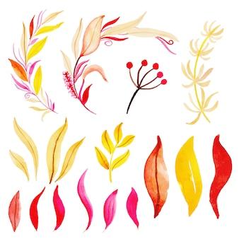 Bela aquarela coleção de folhas de outono