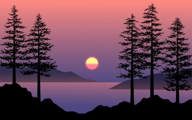 Bela cena do sol com silhueta de pinheiro