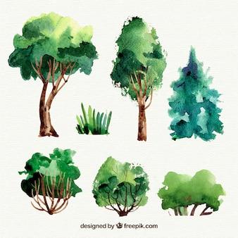 Bela coleção de árvores de aquarela