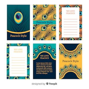 Bela coleção de cartão de pavão