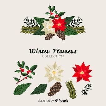 Bela coleção de flores de inverno