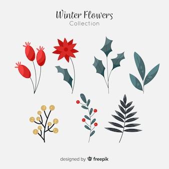 Bela coleção de flores e frutas de inverno